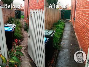 A before/after photo of a path that's been trimmed of the overgrown plants.