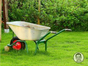 gardening_tasks