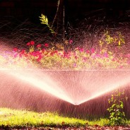 Irrigation Systems – Watering Your Lawn The Easy Way