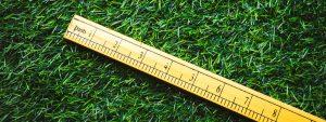 measuring grass height