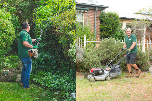 Lawn mowing and hedge trimming