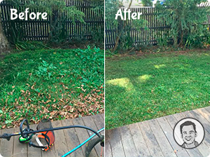 lawn mowing before and after