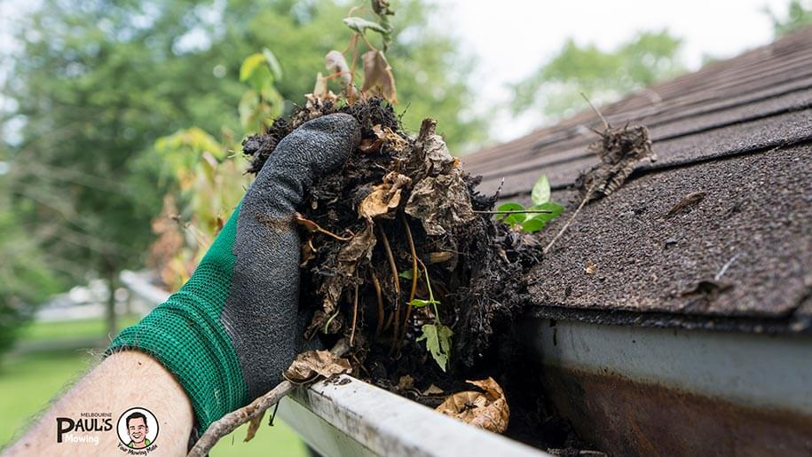 cleaning gutters from organic debris